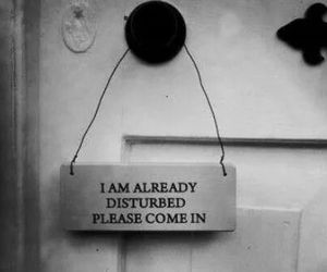 disturb, please, and quote image