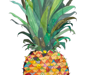 fruit, overlay, and pineapple image