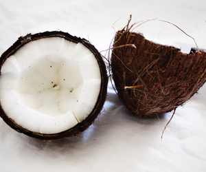 coconut, food, and healthy image