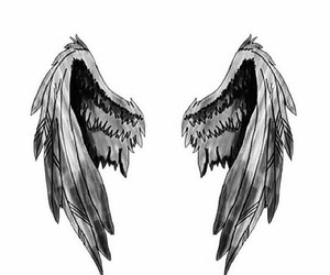 wings, overlay, and angel image
