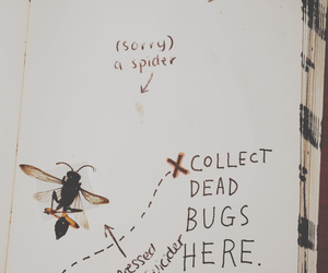 art, bugs, and drawing image