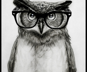 owl, art, and glasses image