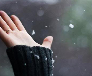 hand and snow image