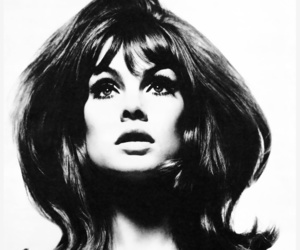 1965, jean shrimpton, and retro image