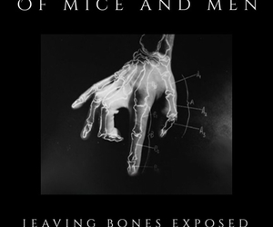 bands, bones, and of mice and men image