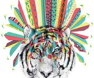 colours, tiger, and ♡ image