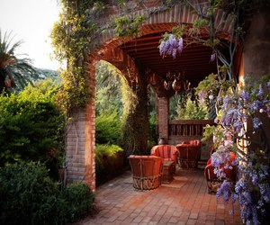 mexico, patio, and travel image