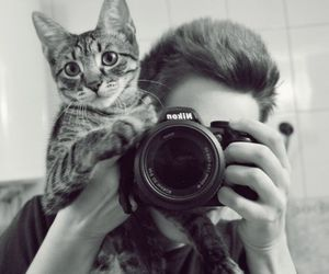 cat, camera, and cute image