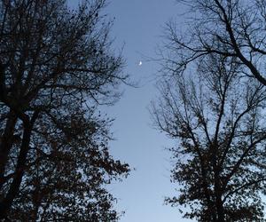 blue, Missouri, and moon image