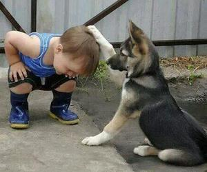 dog, baby, and friends image