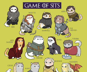 cat, game of thrones, and got image