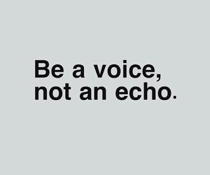 voice, echo, and quotes image