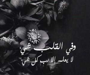 arabic, القلب, and عربي image