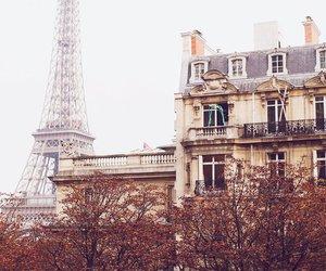 autumn, paris, and beautiful image