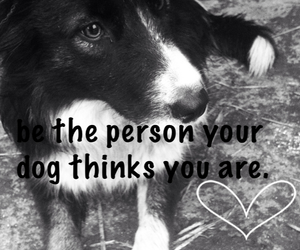 dog, heart, and person image