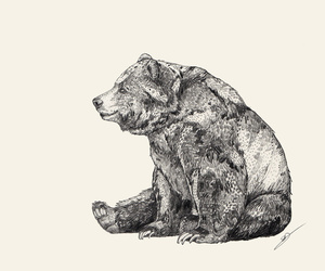 bear, art, and illustration image