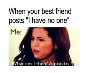 funny, potato, and selena gomez image