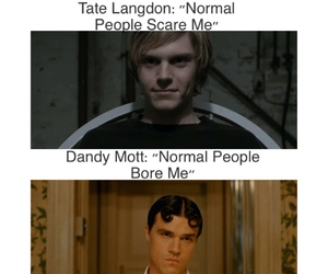 funny and ahs image