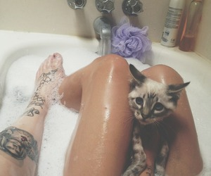 bath, cat, and legs image