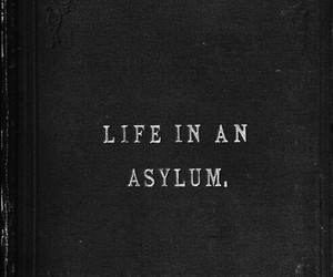 quote+ and asylum+ image
