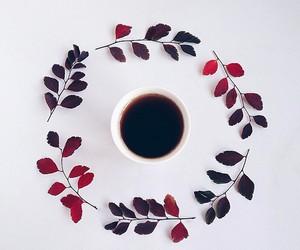 coffee, leaves, and tea image