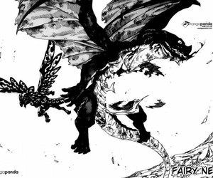 fairy tail, igneel, and acnologia image