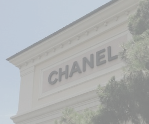 chanel, pale, and grunge image