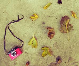 camera, hello_nicoli, and pink image