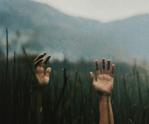 hands, nature, and pohotgraphy image