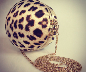 animal print, bag, and clutch image