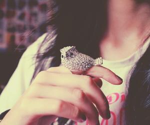 ring, ailisantos@hotmail.com, and cute image
