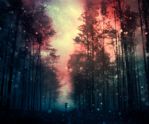 forest and galaxy image