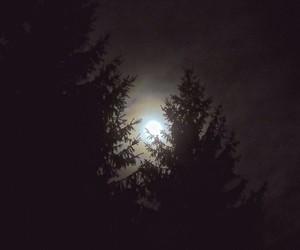dark, moon, and moonlight image