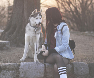 girl, dog, and husky image