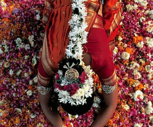 colour, flower, and india image