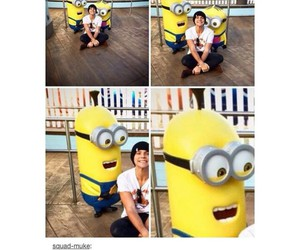 crush, minions, and 5sos image