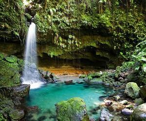 beautiful, nature, and paradise image