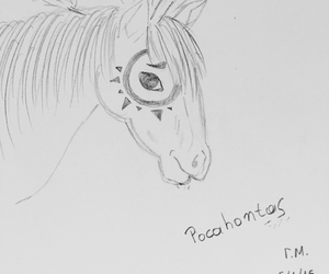 drawing, horses, and pocahontas image
