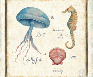 art, jelly fish, and oceanography image