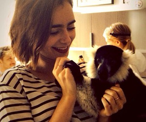 lily collins and monkey image