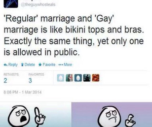 gay, marriage, and funny image