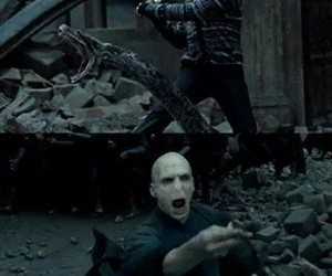 harry potter, lord voldemort, and anaconda image