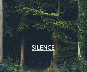 shh, silence, and bosque image