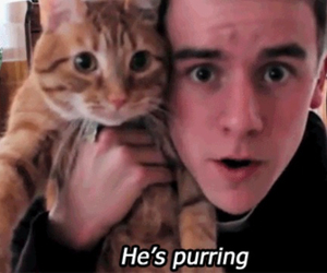 cat, Connor, and franta image