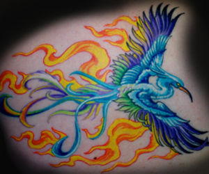 phoenix, tattoo, and bright image