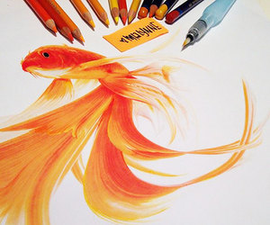fish, drawing, and art image