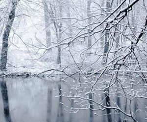snow, winter, and schnee image