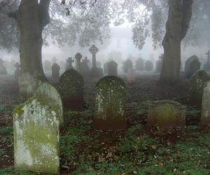 cemetery, fog, and graveyard image