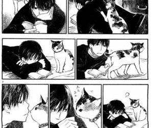 manga, anime, and cat image