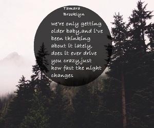 Lyrics, nature, and text image